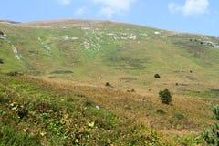 Foto natural da paisagem da opinião cênico do vale maravilhoso da montanha imagem de stock