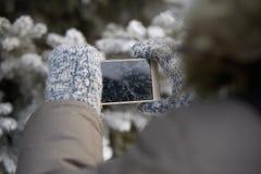 Foto på telefonen Varma tumvanten Förgrena sig av spruce armhåla royaltyfri bild
