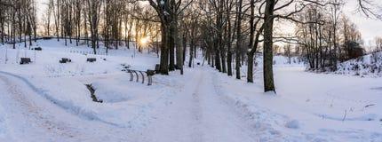Foto panorámica de una calzada vacía en parque en callejón en Sunny Winter Evening fotos de archivo libres de regalías