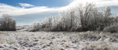 Foto panorámica del paisaje espectacular del invierno Imágenes de archivo libres de regalías