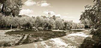 Foto panoramica della cittadella medievale famosa di Vicopisano  Fotografie Stock Libere da Diritti