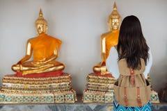 Foto posteriore di vista di bello giovane turista femminile fotografia stock libera da diritti