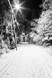 Foto preto e branco de uma trilha do esqui na noite Fotos de Stock