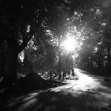 Foto preto e branco do cemitério Imagens de Stock
