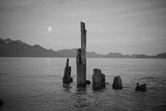 Foto preto e branco do mar fotos de stock royalty free