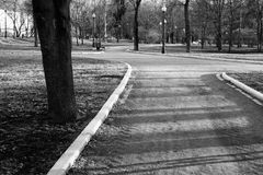 Foto preto e branco do parque da cidade Imagem de Stock Royalty Free