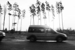Foto preto e branco no estilo retro com o carro no fundo das palmas Imagens de Stock Royalty Free