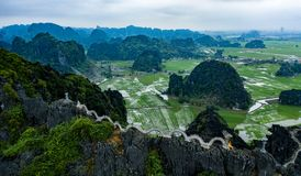 Foto a?rea del abej?n - monta?as y campos del arroz de Vietnam septentrional fotografía de archivo libre de regalías