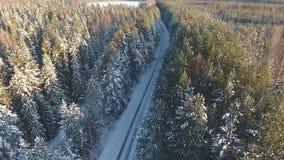 Foto a?rea del camino del invierno en el bosque metrajes