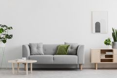 A foto real da sala de estar cinzenta com coxim verde, a mesa de centro de madeira, o cartaz simples na parede e o armário com os fotos de stock