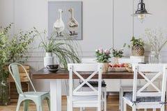 Foto real de plantas en un interior rustical del comedor con una tabla, sillas, pintando con los patos fotografía de archivo libre de regalías