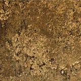 Foto real del metall superficial del moho imagenes de archivo