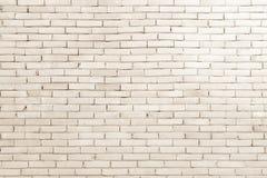 Foto reale di alta risoluzione della parete delle mattonelle Fotografia Stock Libera da Diritti