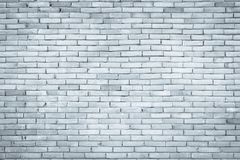 Foto reale di alta risoluzione della parete delle mattonelle backgro senza cuciture della parete delle mattonelle Fotografia Stock