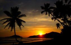 Foto-realistic computererzeugtes Bild eines schönen Sonnenuntergangs, mit Palmen im Vordergrund Lizenzfreie Stockfotos