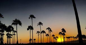 Foto-realistic computererzeugtes Bild eines schönen Sonnenuntergangs, mit Palmen im Vordergrund Lizenzfreies Stockfoto