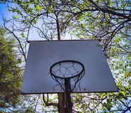 Outdoor basketball basket with back trees stock images