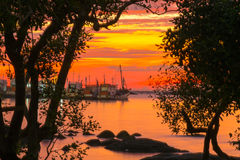 Foto retroilluminate nel tramonto Immagini Stock Libere da Diritti