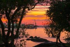 Foto retroilluminate nel tramonto Fotografia Stock
