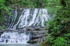 Foto's van watervallen in het Park van Sotchi Stock Fotografie