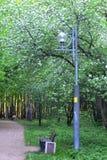 Foto simple de la aún-vida del paso y del banco del parque debajo de la lámpara Imagen de archivo libre de regalías
