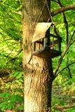 Foto simple de la aún-vida de la pajarera vieja en el árbol Imagen de archivo