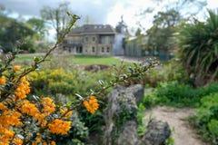 Foto som tas på en solig vårdag av Pinner Memorial Park, UK, västra hus och Heath Robinson Museum i bakgrunden royaltyfria foton