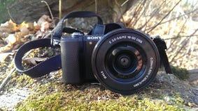 Foto Sony Stockbilder
