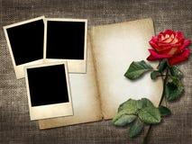 foto stile polaroid su un fondo di tela con la rosa rossa fotografia stock libera da diritti