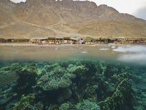 Foto subaquática - meios corais, meia rocha do deserto no local do mergulho 'três associações ' foto de stock