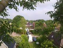 Foto uit boom stock afbeelding