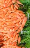 Foto van de wortelen de organische Voorraad Stock Afbeelding