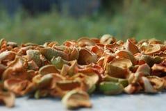foto van droge appelen Stock Fotografie