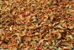 foto van droge appelen Royalty-vrije Stock Afbeelding