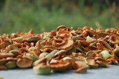foto van droge appelen Royalty-vrije Stock Foto's