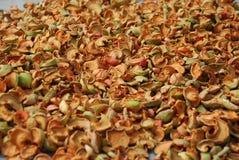 foto van droge appelen Stock Foto