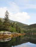 Foto van een berg en bomen die in het water refelcting Royalty-vrije Stock Foto