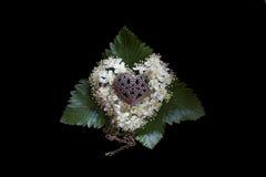 Foto van een gouden hart op een hoofdkussen van bloemen van lijsterbes op een zwarte achtergrond Royalty-vrije Stock Afbeeldingen
