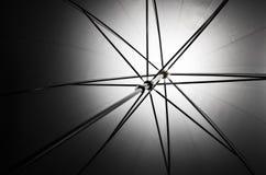 Foto van een spruit door paraplu Stock Fotografie