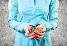 Meisje met muntstukken Stock Foto's