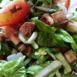 Foto van Italiaanse schotel Panzanella Verse product-groenten vegetables stock afbeeldingen