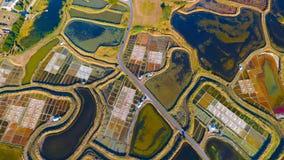 Foto verticale delle paludi d'acqua salata di Guerande nella Loira Atlantique Fotografia Stock