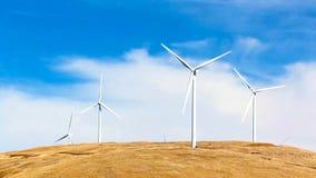 Foto viva de Cinemagraph dos moinhos de vento do céu azul video estoque