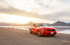 Foto von Ford Mustang Stockfotos