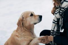 Foto von Labrador Tatze gebend der Frau in der schwarzen Jacke am Wintertag Stockfotografie