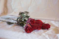 Foto von roten Rosen Stockfotos