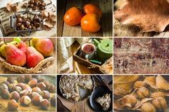 Fotocollage nio fyrkantiga bilder, höst, nedgång, hasselnötter, valnötter, persimoner, päron, kastanjer, äppelpaj, fruktte, bok s Royaltyfri Bild
