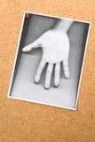 Fotocopia della mano sull'albo Fotografia Stock Libera da Diritti