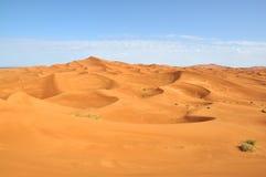 Sahara öken Fotografering för Bildbyråer