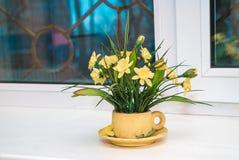 Fotoet av en husväxt med blommor royaltyfri bild